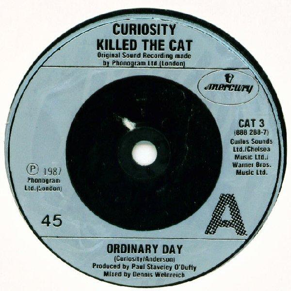 Curiosity Killed The Cat Ordinary Day