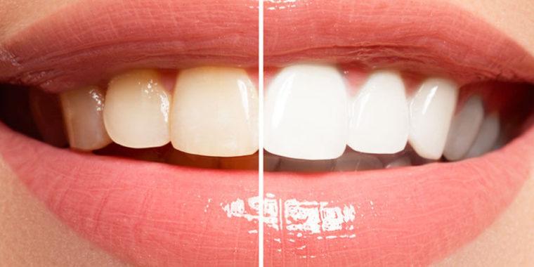 White & Co Dental