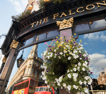 The Falcon Food & Drink