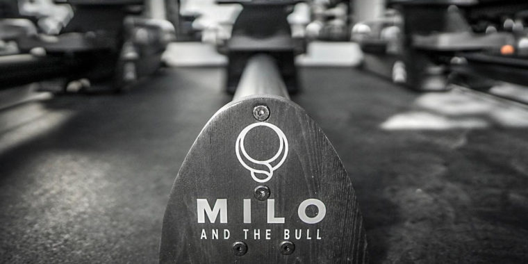 Online Fitness with Milo and the Bull 01 Jan - 31 Mar