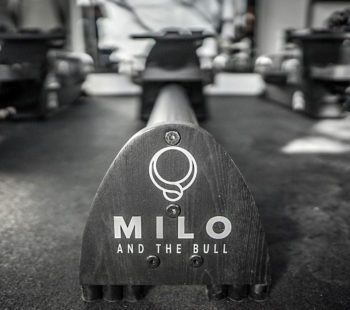 Online Fitness with Milo and the Bull 05 Nov - 30 Nov