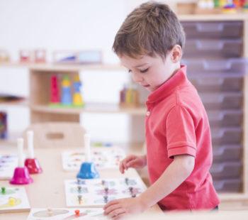 Abacus Ark Nursery Professional Services