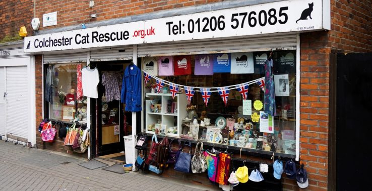 Colchester Cat Rescue (Charity Shop) Shopping