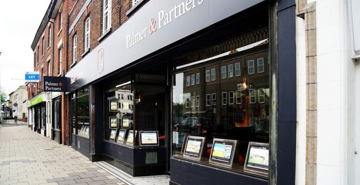 Palmers and Partners Professional Services