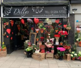 Dillys Florist Independents