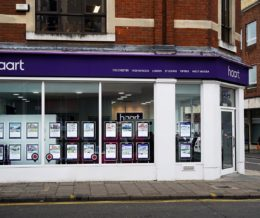 Haart Professional Services