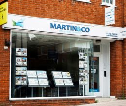 Martin & Co Professional Services