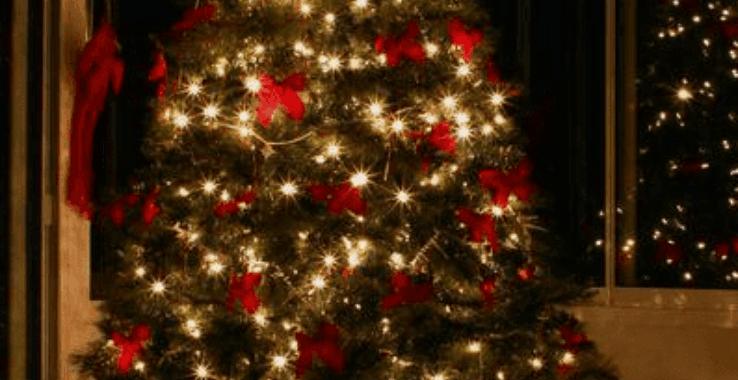 A Merry Little Christmas HEAD