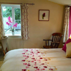 The Firs - B&B with Tea Rooms
