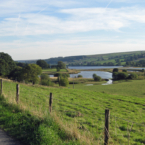 Gouthwaite Reservoir Nature...