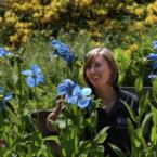 RHS Garden Harlow Carr Flower...