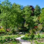 The Himalayan Garden &...