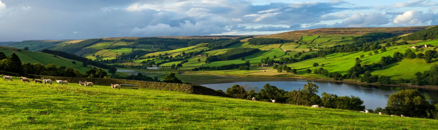 Picture of Nidderdale AONB