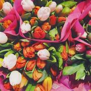 Florists & Garden Centres