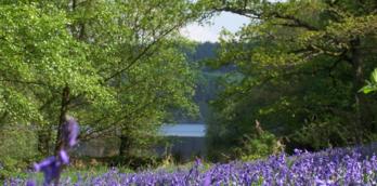 Fewston Reservoir -  Walking Routes