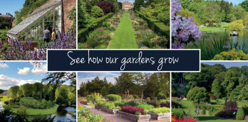See how our Gardens Grow - Gardens 2021