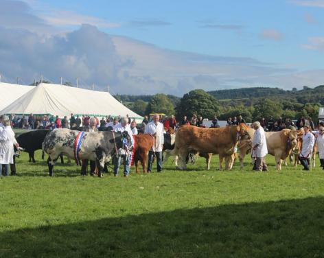 Nidderdale Agricultural Show