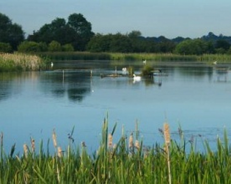Staveley Nature Reserve