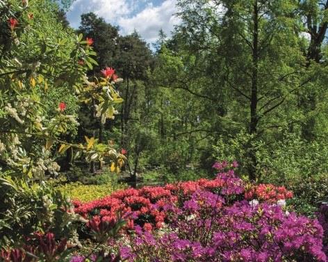 The Himalayan Garden & Sculpture Park