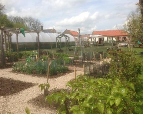 Ripon Walled Garden