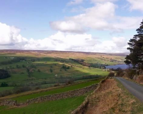Scot Gate Ash walking route