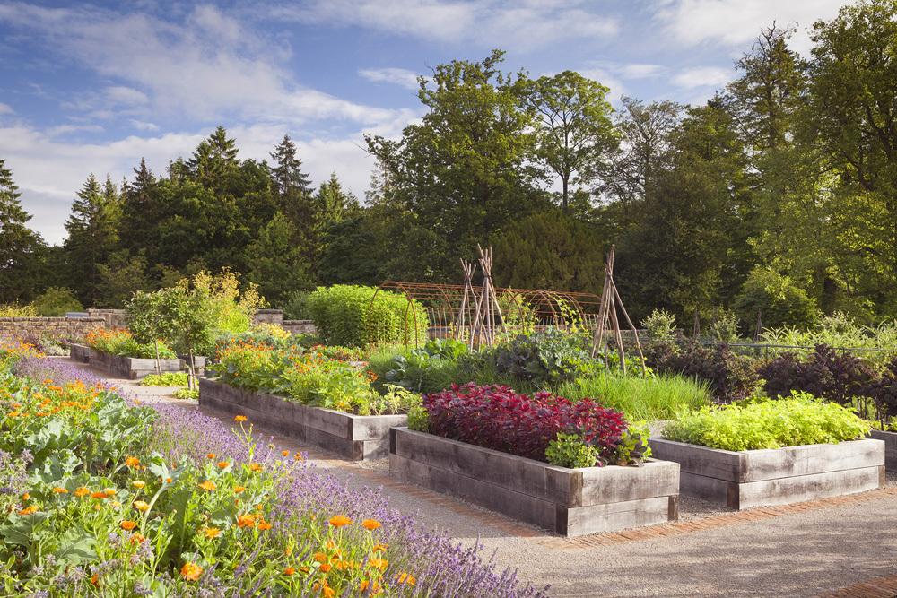 Rudding Park Kitchen Garden Summer 0195