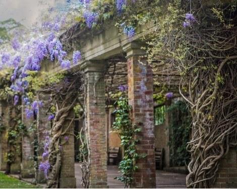 Valley Gardens blog from crowdriff