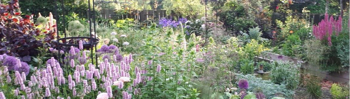 Garden full