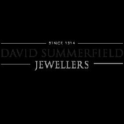 David Summerfield (The Village) Logo