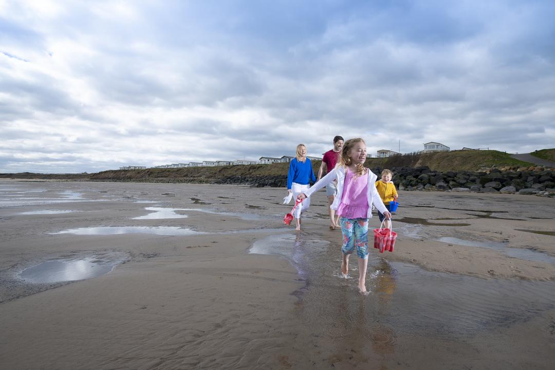 Beach Setting 084 sandy bay 2019 AND7909 26254