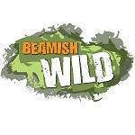 Beamish Wild Treetop Adventure
