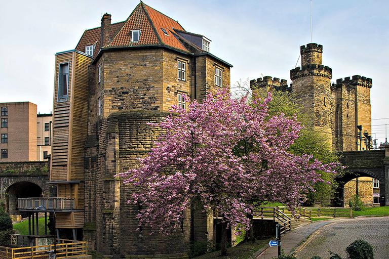 Heritage SECONDARY Newcastle Castle