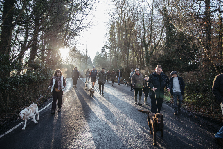 Dog Friendly Thigns to Do djmphotography south causey inn new year day dog walk 41