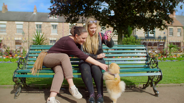 Dog Friendly Things to Do Beamish Dog Friendly 3