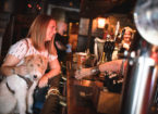 Dog-Friendly Pubs in Newcastle and Gateshead