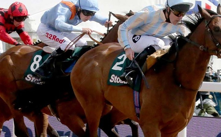 Northumberland Plate Dayat Newcastle Racecourse Resized GIF