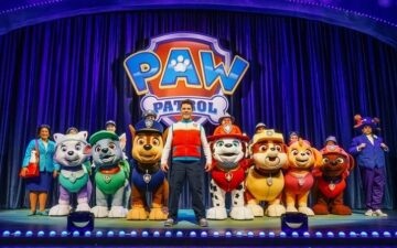 Paw Patrol Race to the Rescue