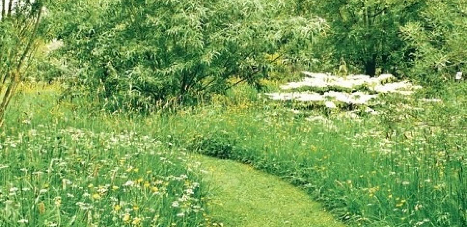 Meadow crop 1 280926078