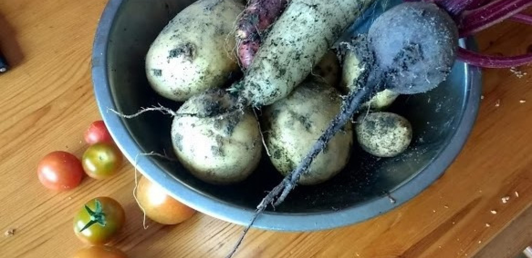 Vegetables 1925181064