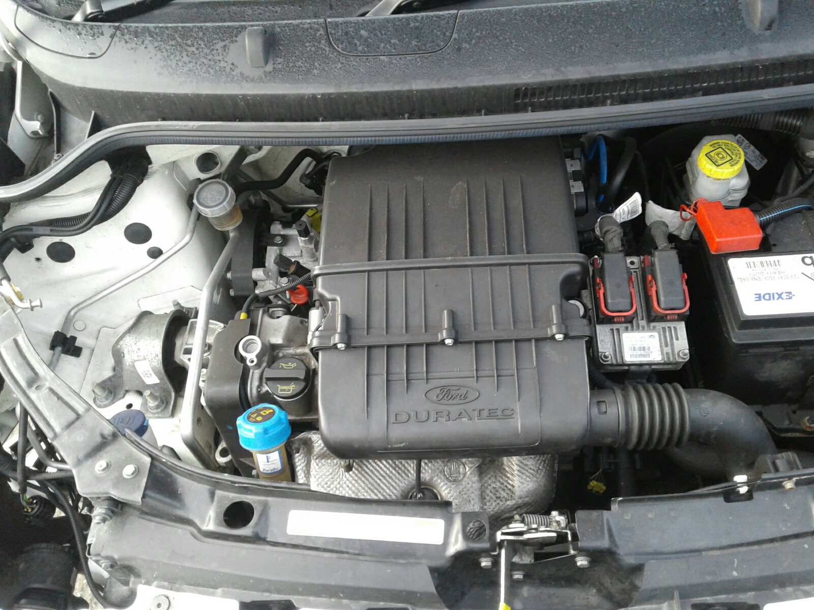 Engine Ford Ka  Zetec Bhp Pet Manual Abaa Abca Fp