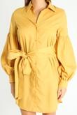 v/735/Puff_Sleeve_Belted_Shirt_Dress_In_Mustard-5__35460.jpg