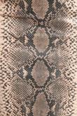 l/439/Textured_Snake_Print_Midi_Skirt_In_Taupe-8__61866.jpg