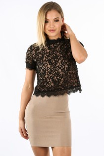 i/665/11852-_Contrast_Lace_Short_Sleeve_Top_In_Black-2__85610.jpg