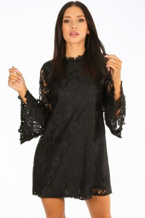 n/802/CY126-_Mesh_Lace_Shift_Dress_In_Black__70270.jpg
