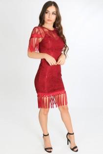 g/297/W1532-_Tassel_Dress_in_Burgundy-2-min__67166.jpg