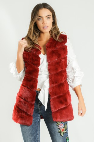 x/750/Short_Hair_Gilet_in_Wine-2__01703.jpg