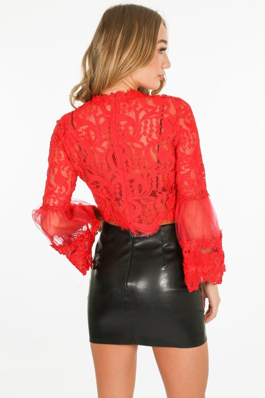 q/531/CY033-_Lace_crop_top_in_Red-3-min__84325.jpg