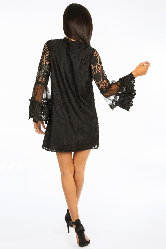 g/201/CY126-_Mesh_Lace_Shift_Dress_In_Black-4__58800.jpg
