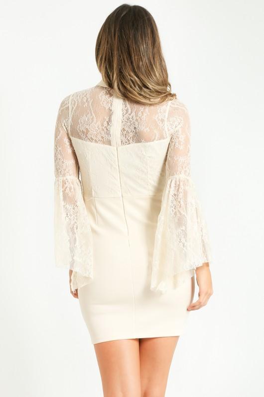 f/509/Lace_Bodycon_Mini_Dress_In_Cream-4__17147.jpg