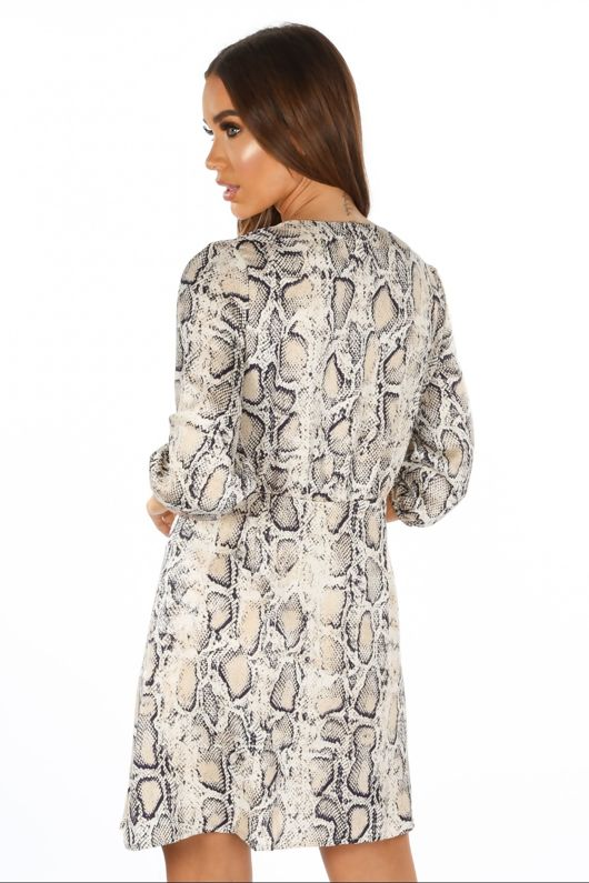 Snake Print Mini Dress With Button Detail